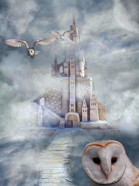 Owl Diamond Painting Kit - Hogwarts-Square 15x20cm- - Paint With Diamonds