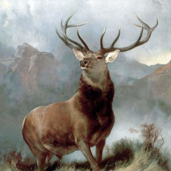 Deer Diamond Painting Kit - Monarch Of The Glen-Square 20x20cm- - Paint With Diamonds
