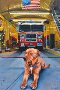 Nickels America BFCM Dog Fall Sale Firefighter