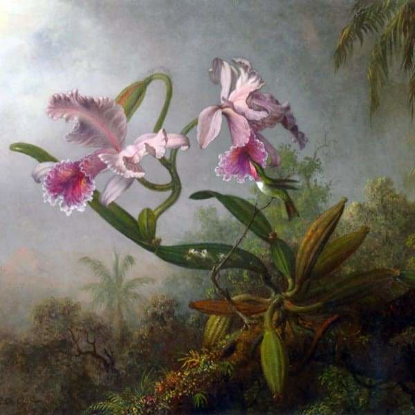Nature Diamond Painting Kit - Orchid Hummingbird-Square 20x20cm- - Paint With Diamonds