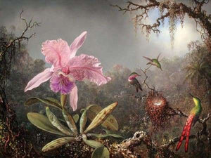 Nature Diamond Painting Kit - Orchids And Hummingbird-Square 15x20cm- - Paint With Diamonds
