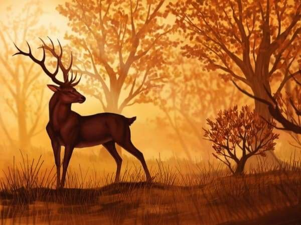 Sunset Diamond Painting Kit - Sunset Deer-Square 15x20cm- - Paint With Diamonds