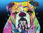 Abstract Diamond Painting Kit - The Bulldog-Square 15x20cm-