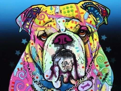 Dog Diamond Painting Kit - The Bulldog- - Paint With Diamonds
