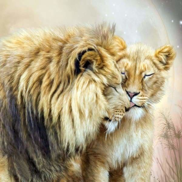 Safari Diamond Painting Kit - The Kiss-Square 20x20cm- - Paint With Diamonds