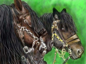 Horse Diamond Painting Kit - Trusty Steeds-Square 15x20cm- - Paint With Diamonds