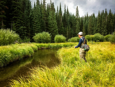 Summer Fly Fishing Tips: Exploring Wilderness Waters