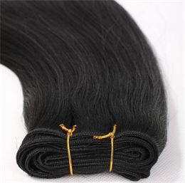 100% European Remy Weft Hair Extensions #1