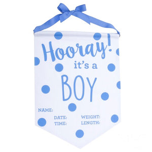 Baby Boy Announcement Banner