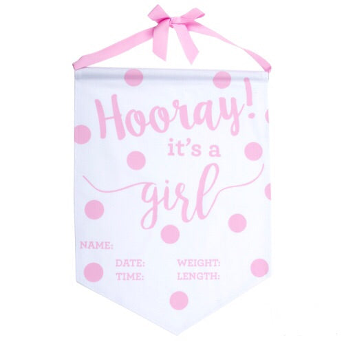 Baby Girl Announcement Banner