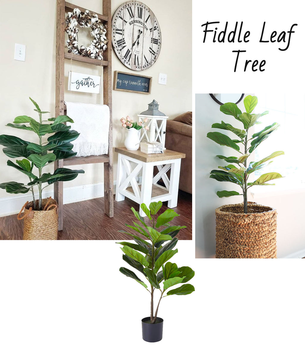 Potted Fiddle Leaf Fig Tree
