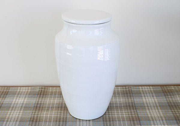 Large White Terracotta Pot