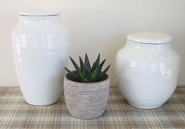 Large and Small White Terracotta Pots