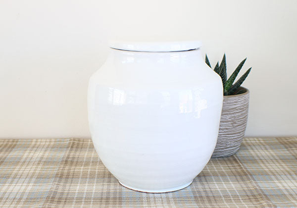 Small White Terracotta Pot