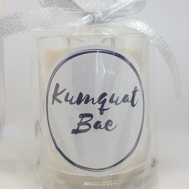 VANILLA & COCONUT LARGE SOY WAX CANDLE
