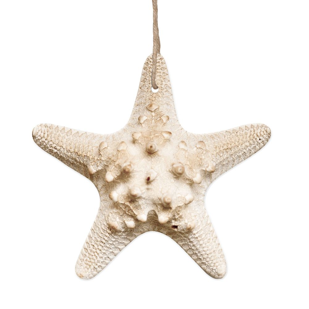 Hamptons natural hanging starfish