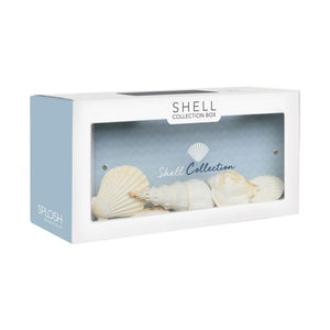 Hamptons shell collection box