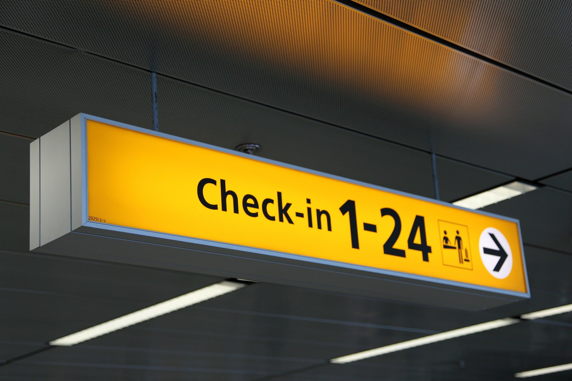 AMADEUS PROFESSIONAL AIRPORT CUSTOMER SERVICE AGENT CHECK IN