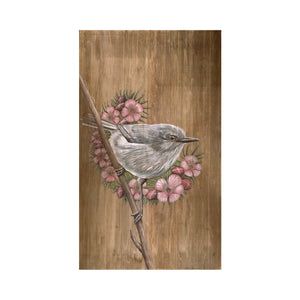 Grey Warbler with Manuka Flowers - A3 print
