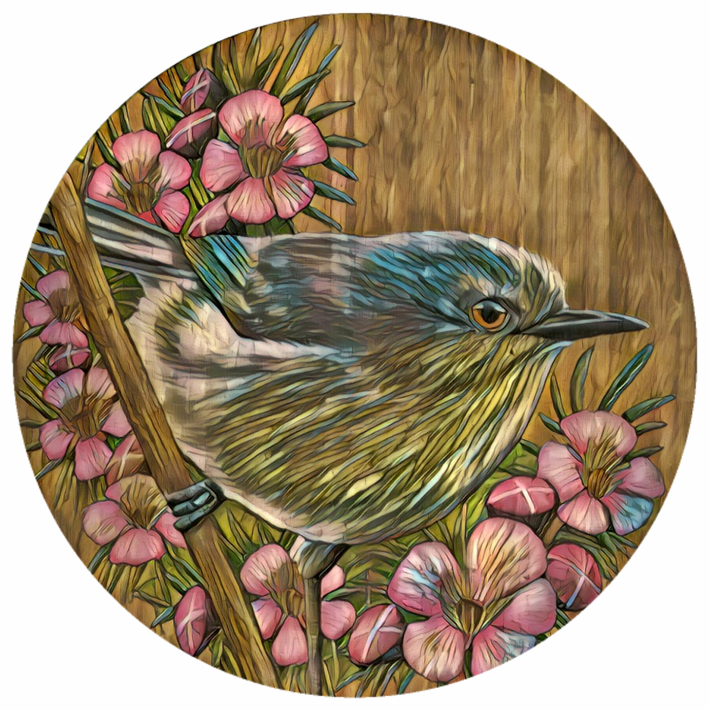 Grey Warbler and Manuka flowers reworked outdoor art
