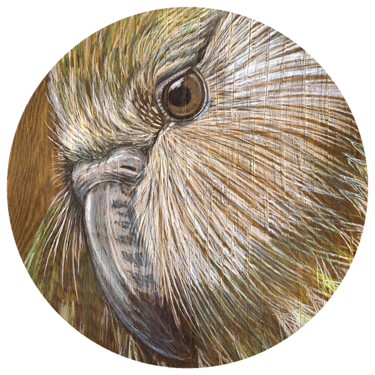 Kakapo art dot