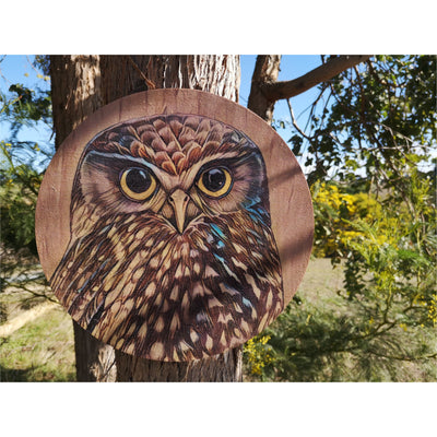 Ruru on timber outdoor art