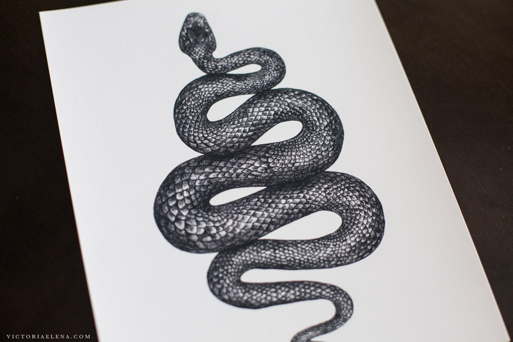 The Snake: The Night Creature Collection