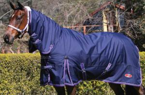 What type of rugging protection do you need for your horse?