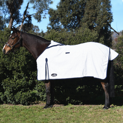 Eurohunter Grand National Deluxe - Rug -  Saddleworld P/L