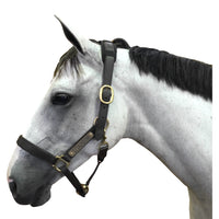PHITEN BRIDLE HEAD PIECE