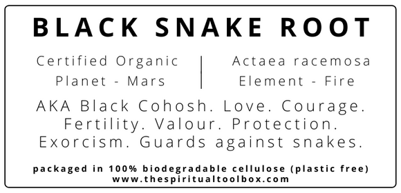 Black Snake Root (Black Cohosh)
