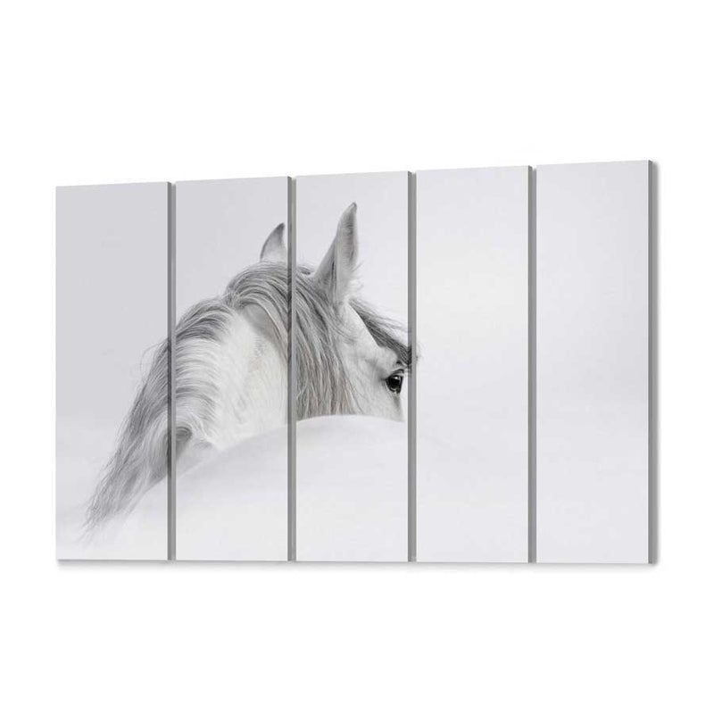 White Horse Canvas Wall Art