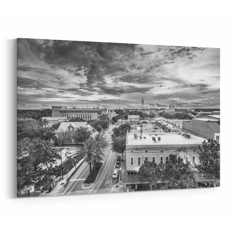 Gainesville Skyline Canvas Print