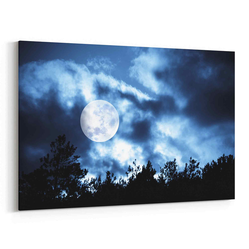 Moon Over Trees Canvas Print