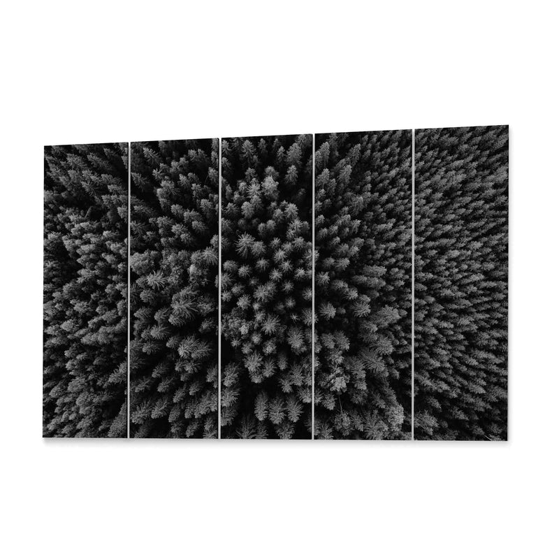 Pine Forest Arerial View Canvas Print