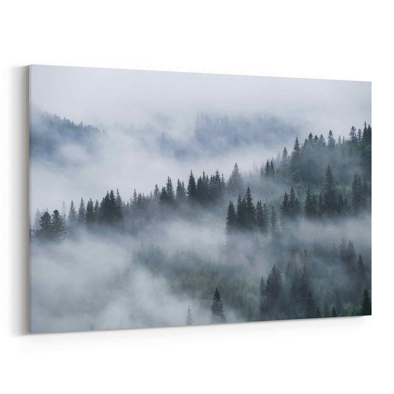 Foggy Pine Forest Canvas Print