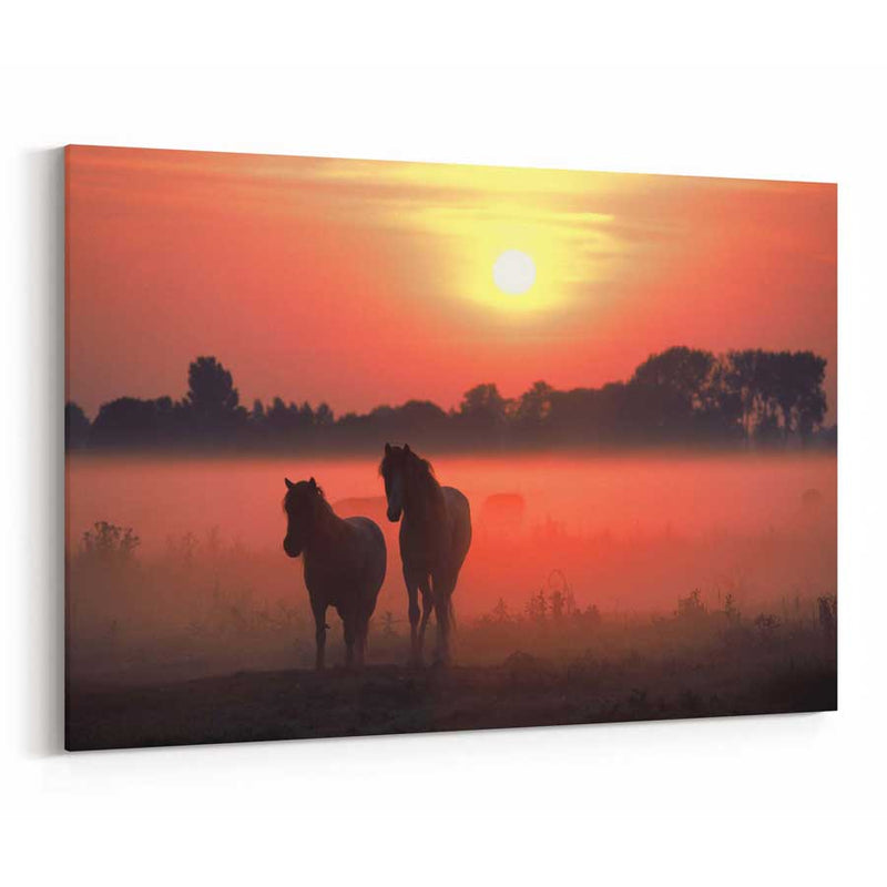 Horses Sunrise Mist Canvas Print