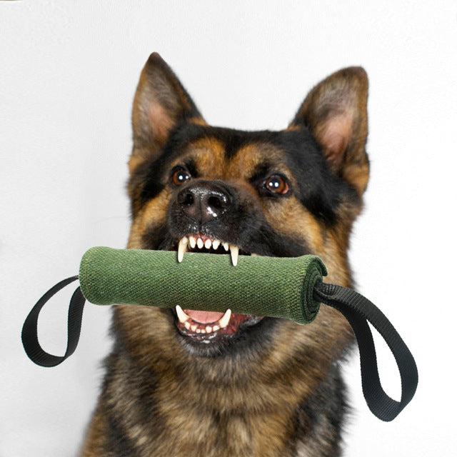 Dog toy, bite and tug
