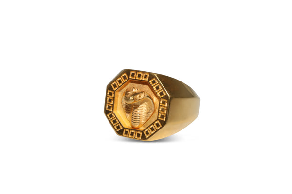Cobra Signet Ring in Gold