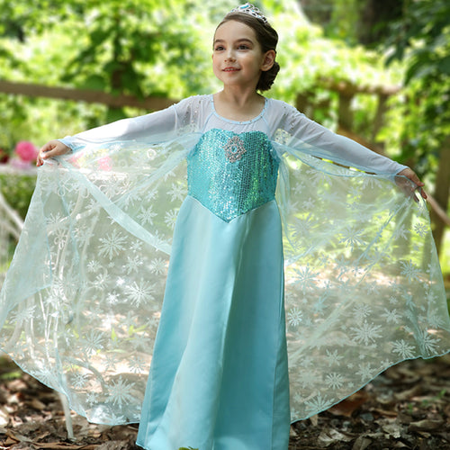 Girls Disney Frozen Princess Elsa Princess Costume Dress - Booth79