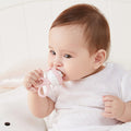 Baby And Toddler Chewing Food Supplement Feeder - Booth79