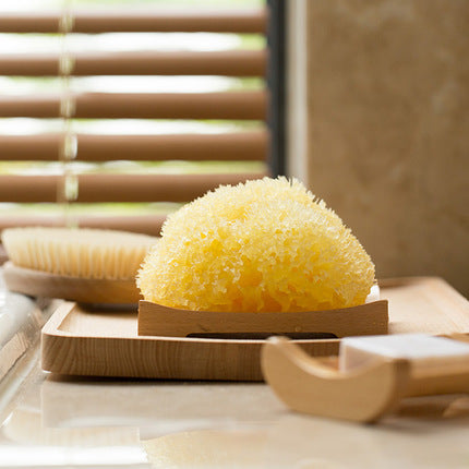 Mediterranean 100% Natural Honeycomb Sea Sponge - Booth79