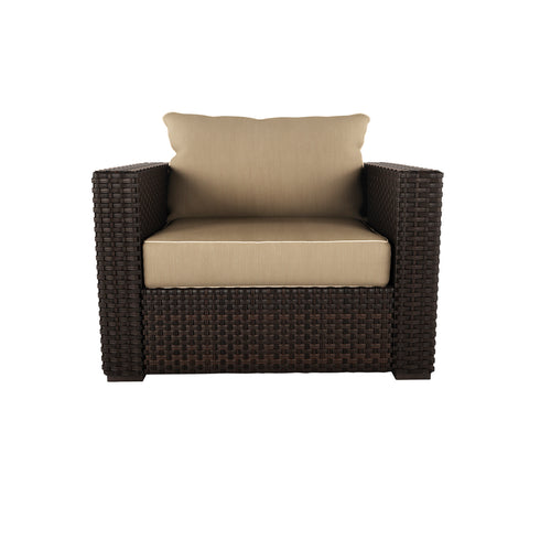 Spring Ridge Lounge Chair w/Cushion (1/CN)