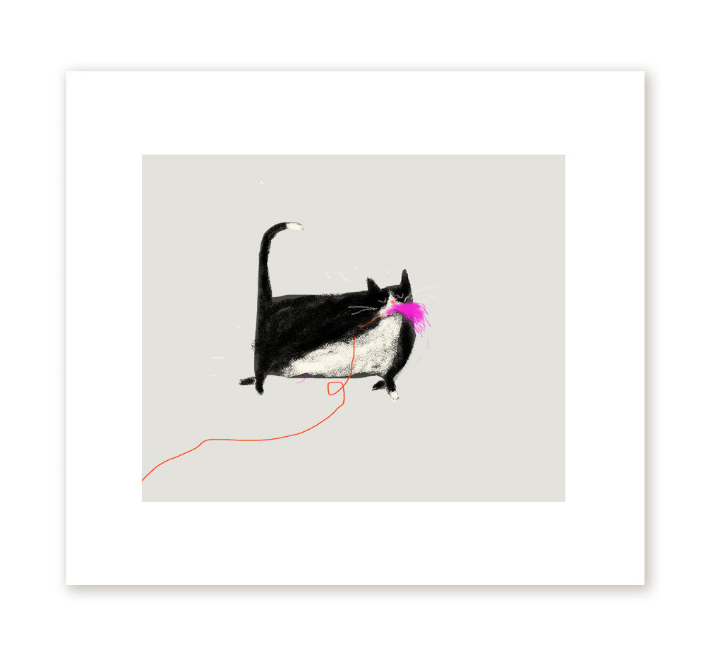 The Domestic Cat Predator Print by The Dancing Cat