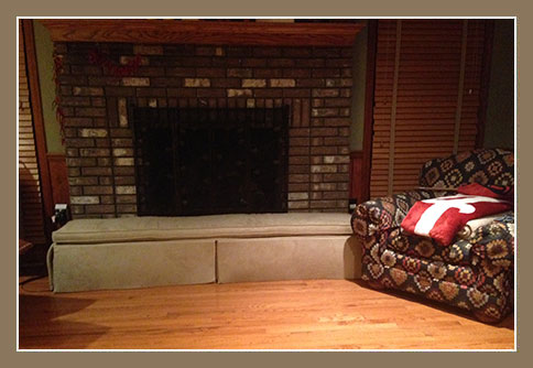 Childproofing Hearth Protector