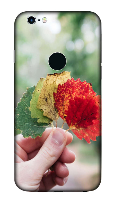 leaf stage Hard Case For Apple iPhone 6S