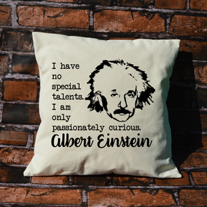 Albert Einstein pillow