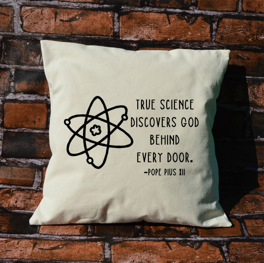 Science and God pillow