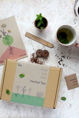 Grow Your Own Herbal Tea Indoor Garden Seed Kit - Peppermint, Chamomile and Lemon Balm GIFTING | CL So. Seed Kits