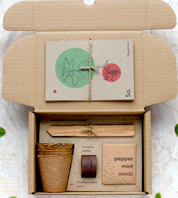 So. Seed Kits GIFTING | CL Grow Your Own Peppermint Herbal Tea Seed Kit